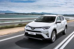 St. Petersburg Toyota will start the production of RAV4 crossover in August