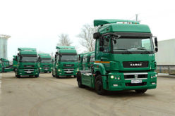 Leading truck models in Russian truck market in 2016