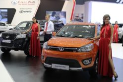 Great Wall Motor factory in Russia will start commissioning works in 2018